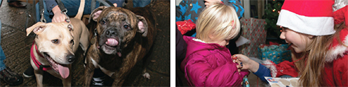 WHAT IT'S ALL ABOUT – a loveable pair of pooches show their appreciation while kids visit the grotto